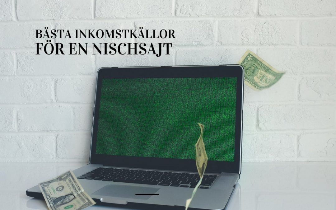 laptop med dollar cash (inkomstkällor)