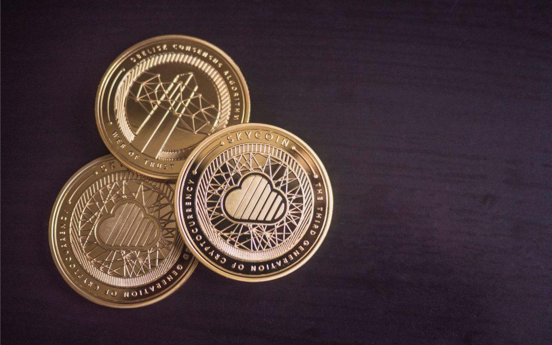 kryptovalutor i mynt format