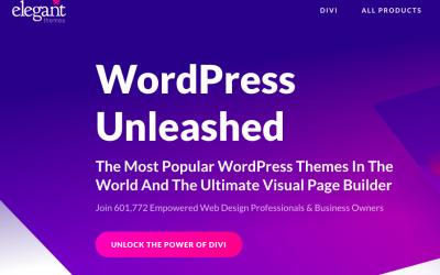 DIVI: WordPress Paketet på Black Friday Rea